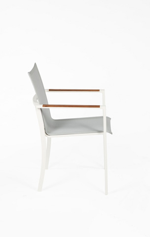 Control Brand - The Uno Dining Arm Chair - FCC1804SILVER