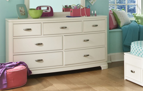 Legacy Classic Furniture - Dresser and Mirror - 9910-0300/1100