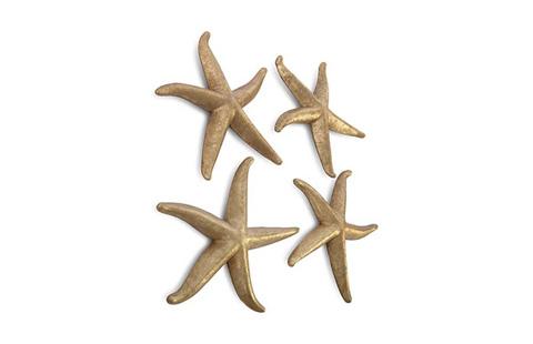 Phillips Collection - Starfish - PH67531