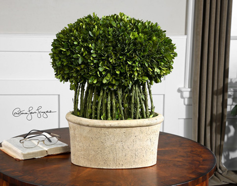 Uttermost Company - Preserved Boxwood Willow Topiary - 60108