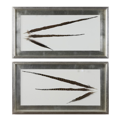 Uttermost Company - Pheasant Feathers Art - 36201
