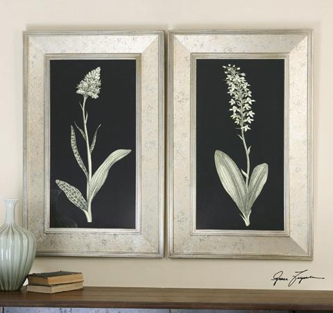 Uttermost Company - Antique Floral Study Art - 41529
