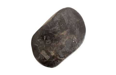 Phillips Collection - Petrified Stool - ID77959