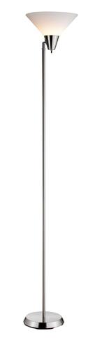 Adesso Inc., - Adesso Swivel One Light Floor Lamp in Steel - 3677-22