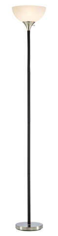 Adesso Inc., - Adesso Gander Floor Lamp One Light in Black - 7007-01