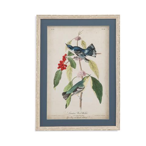 Bassett Mirror Company - Cerulean Wood Warbler - 9900-805B