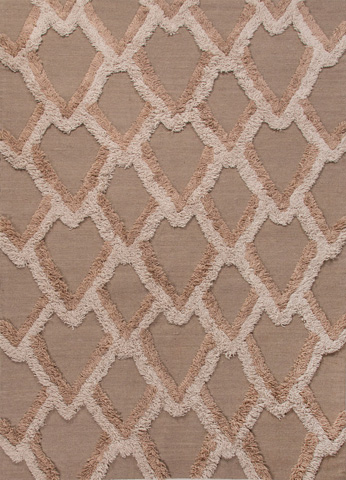 Jaipur Rugs - National Geographic 8x10 Rug - NFP04