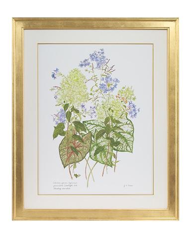 John Richard Collection - Caladium, Hydrangea and Plumbago - GBG-0748