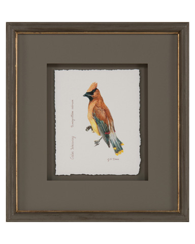 John Richard Collection - Janice Dean's Flock of Birds VI - GBG-1052F