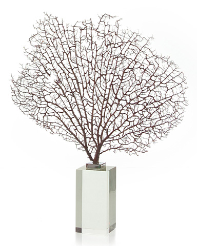 John Richard Collection - Natural Sea Fan with Glass Base - JRA-8957