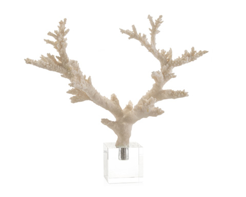 John Richard Collection - Coral Branch on Crystal - JRA-9440