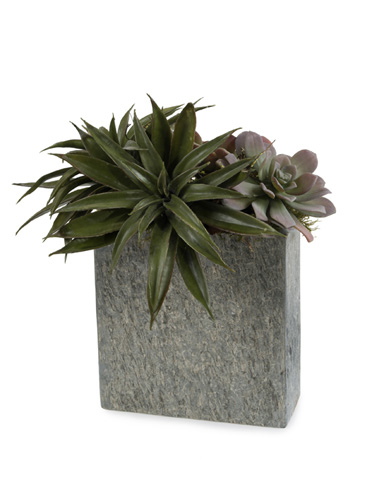 John Richard Collection - Gray Succulents - JRB-3220