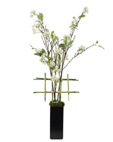 John Richard Collection - Asian Pear Blossom - JRB-3237