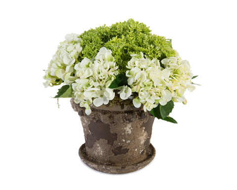 John Richard Collection - Crusty Garden Hydrangeas - JRB-3587