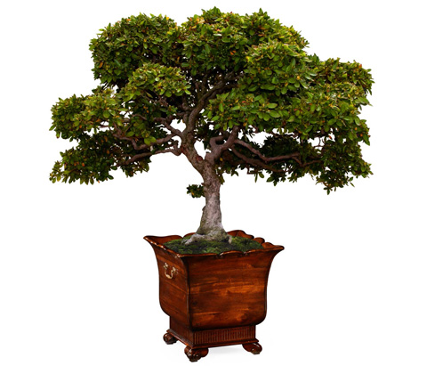 Jonathan Charles - Mahogany Standing Trough Planter - 494337