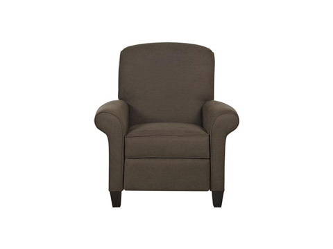 Klaussner Home Furnishings - Troupe High Leg Recliner - 51308 HLRC