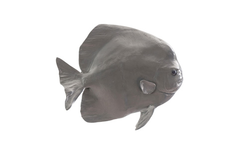 Phillips Collection - Australian Batfish in Polished Aluminum - PH64558