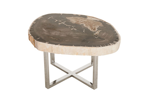 Phillips Collection - Petrified Wood Coffee Table - ID74579