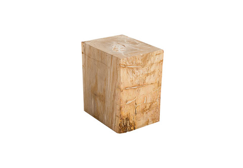 Phillips Collection - Petrified Wood Stool - ID76209