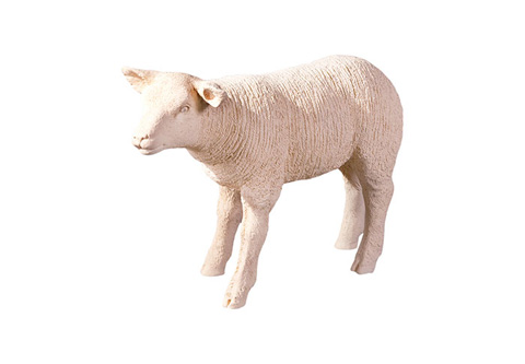 Phillips Collection - Texel Sheep - PH60415
