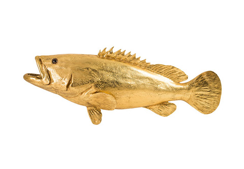Phillips Collection - Estuary Cod Fish - PH66054
