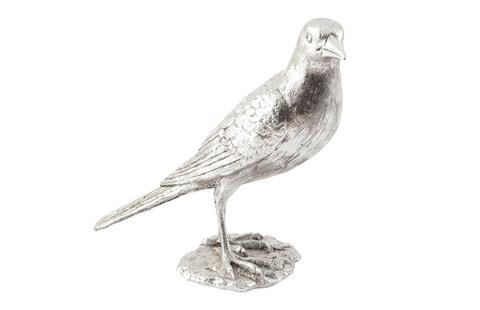 Phillips Collection - Magpie Bird - PH66557