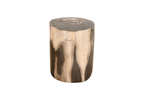 Phillips Collection - Petrified Wood Stool - ID77954