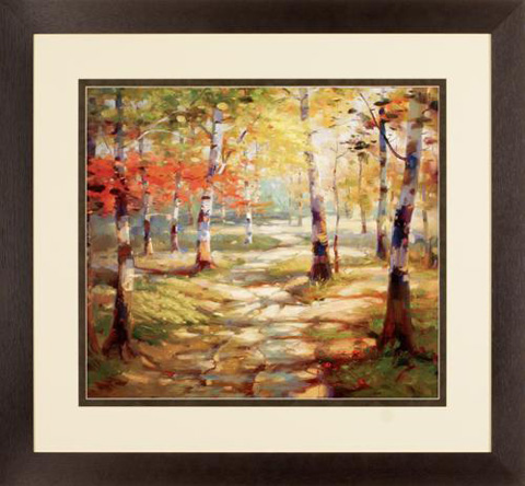 The Picture Source - Birch Clearing - D571A