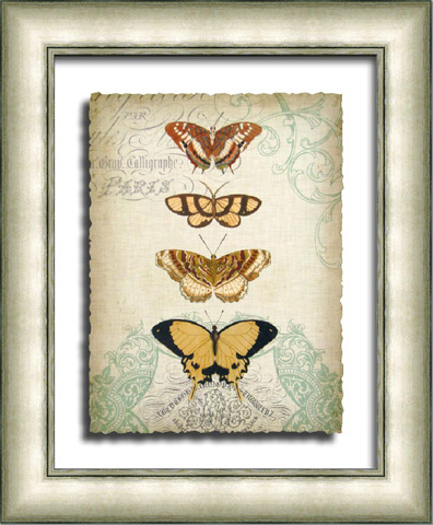 The Picture Source - Cartouche & Butterflies II - G106B
