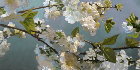 The Picture Source - Blue Blossoms - MCP240