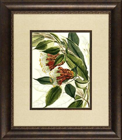 The Picture Source - Fantastical Botanical II - PG01B
