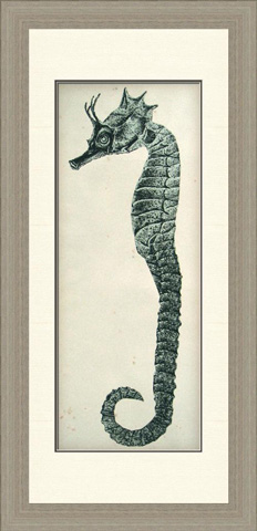 The Picture Source - Vintage Seahorse I - V049A