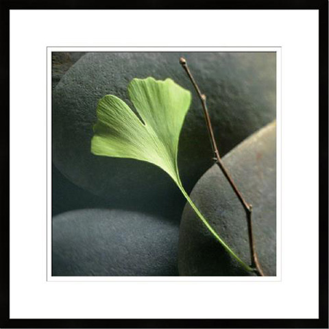The Picture Source - Gingko - W352B