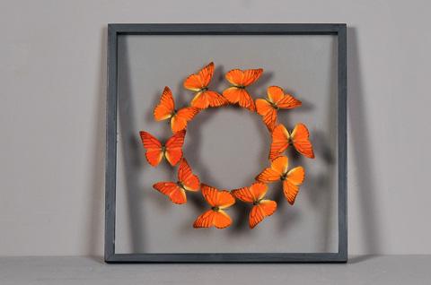 Sarreid Ltd. - Butterflies Box - 29437