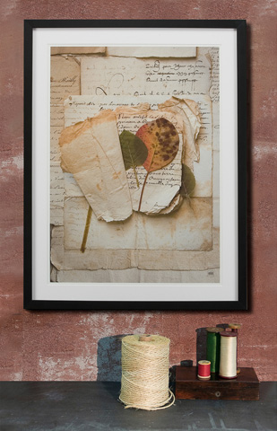 Sarreid Ltd. - Framed Artist Edition Print Rectangle - 28747