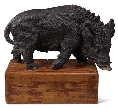 Sarreid Ltd. - Wild Boar On Wood Mount - 29875
