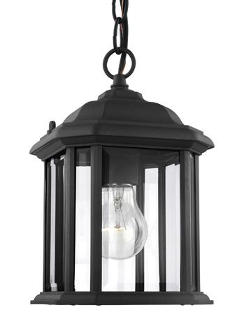 Sea Gull Lighting - One Light Outdoor Semi-Flush Convertible Pendant - 60029-12