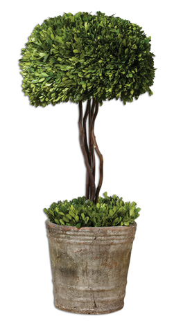 Uttermost Company - Preserved Boxwood Tree Topiary - 60095