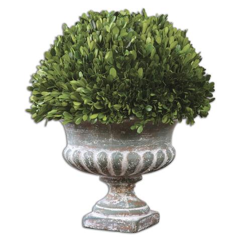Uttermost Company - Preserved Boxwood Garden Urn - 60113