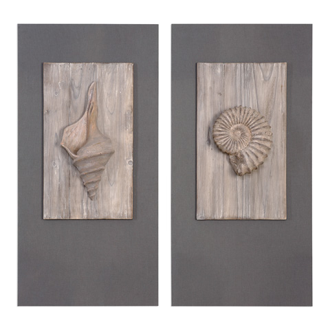 Uttermost Company - Shell Sculptures Art-Set of Two - 41549