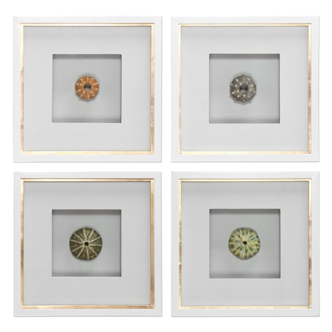 Uttermost Company - Sea Urchins Art-Set of Four - 41550